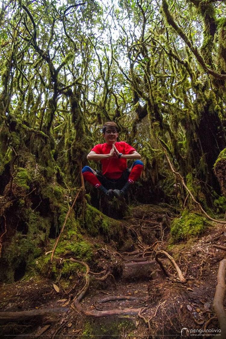 GunungIrau_MossyForest_CameronHighland_19